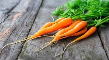 ۶ گزینه غذایی را روزانه مصرف کنید تا سرطان نگیرید!