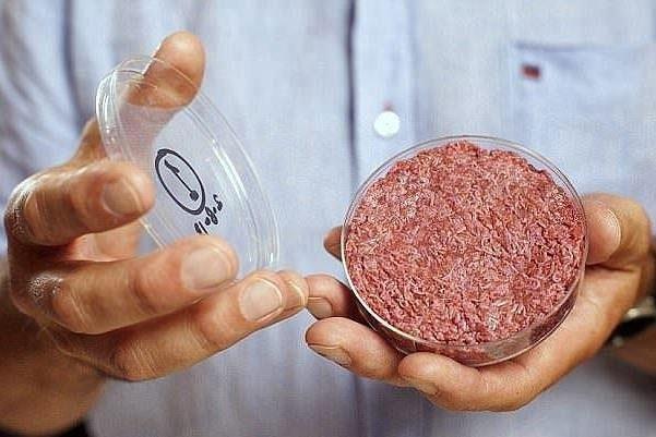 عرضه گوشت پاک در سراسر جهان تا ۲ سال دیگر