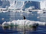 کشف بزرگترین منطقه آتشفشانی جهان در قطب جنوب