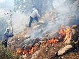پنچ جنگلبان در محاصره آتش