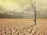 تغییر اقلیم موجب خشکی رودخانههای نواحی روستایی میشود