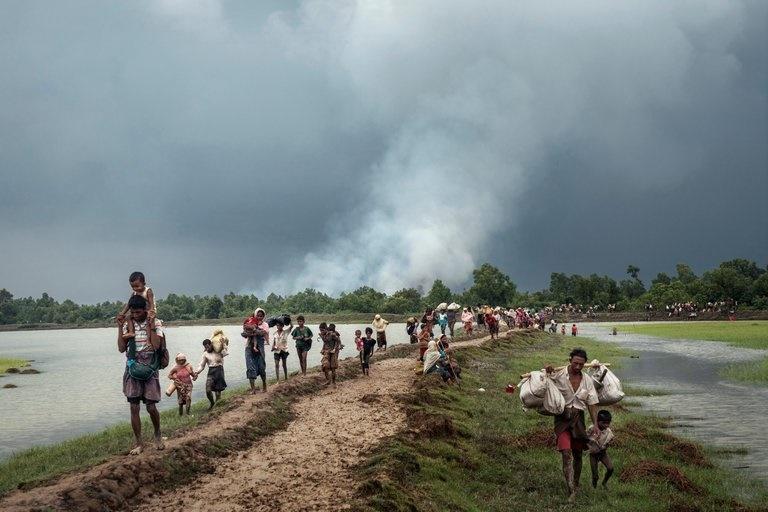 عفو بینالملل: روستاهای مسلمانان روهینگیا را به آتش میکشند