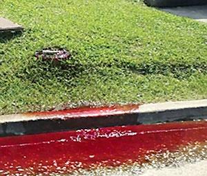 جاریشدن خون از یک گورستان