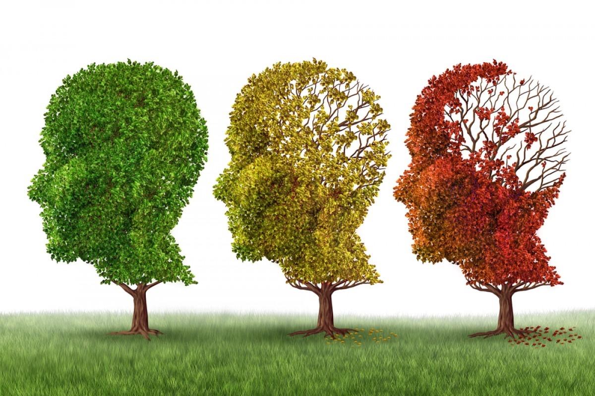 آلزایمر را فراری دهید