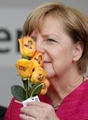 آغاز انتخابات آلمان