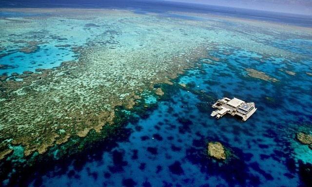 سرمایهگذاری استرالیا بر ایدههای موثر برای حفظ دیواره بزرگ مرجانی