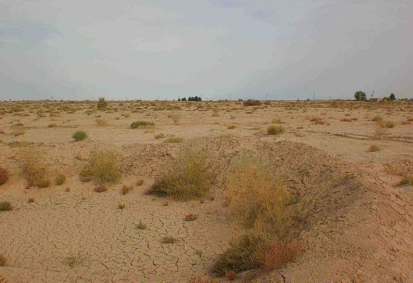 رفع معضل ریزگرد خوزستان نیازمند مهار ۳۲۰ هزار هکتار کانون گرد و خاک است