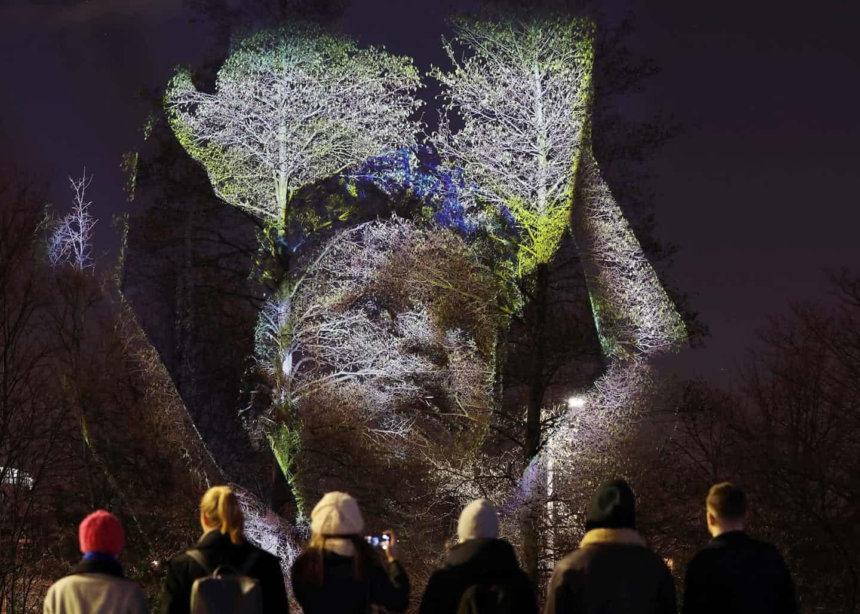 عکس: نمایش روی درختان