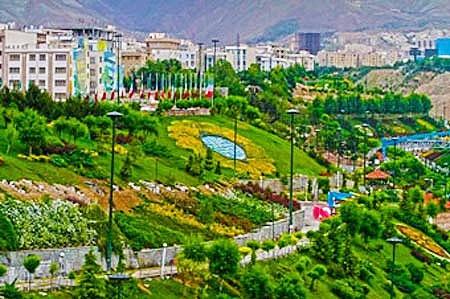 بسیاری از گیاهان تهران قدرت جذب آلودگی ندارند