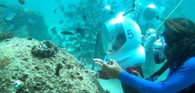 کاشت مرجانهای دریایی با حضور کودکان در آبهای کم عمق سواحل اندونزی