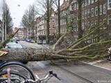 طوفان فریدریکه در آلمان ۶ کشته بر جای گذاشت