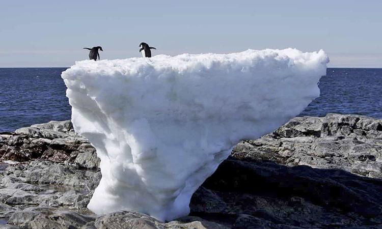 یخ های قطب جنوب