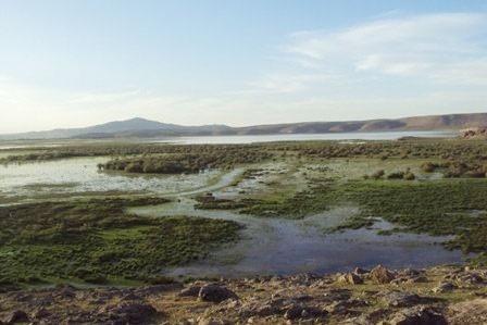 خشک شدن تالاب درگه سنگی آذربایجان غربی