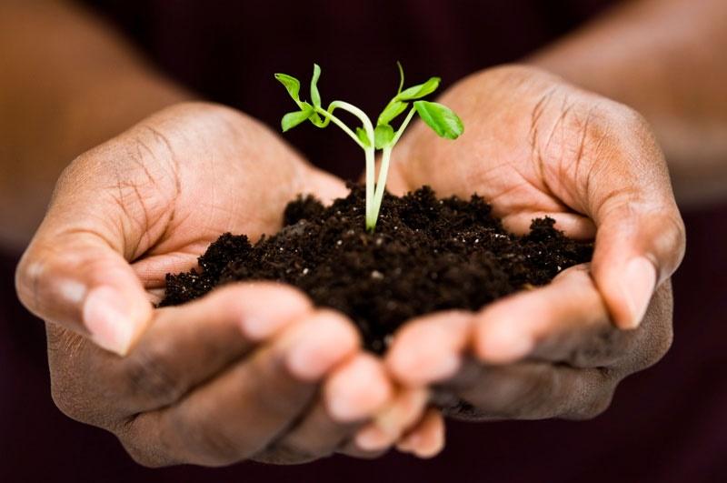اطلس آلودگی خاک با اولویت چهار استان تهیه میشود