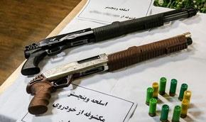کشف و توقیف ۴۲ قبضه اسلحه در کرمانشاه