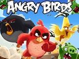 سریال بلند پرندگان خشمگین ساخته میشود