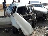 افزایش تصادف در ایران با ابتلا به نوعی انگل
