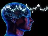 روشهای افزایش هوشیاری مغز را بشناسید