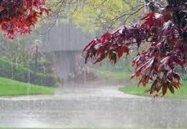 پیش بینی باران در ۱۶ استان |  ورود سامانه بارشی جدید از ۲۹ مهر ماه