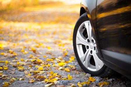 نکته بهداشتی: رانندگی در پاییز