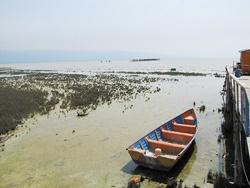 خلیج گرگان به گندآب تبدیل شد