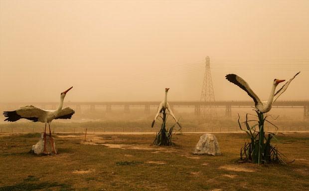 غلظت گرد و غبار اهواز به ۴۷ برابر حد مجاز رسید