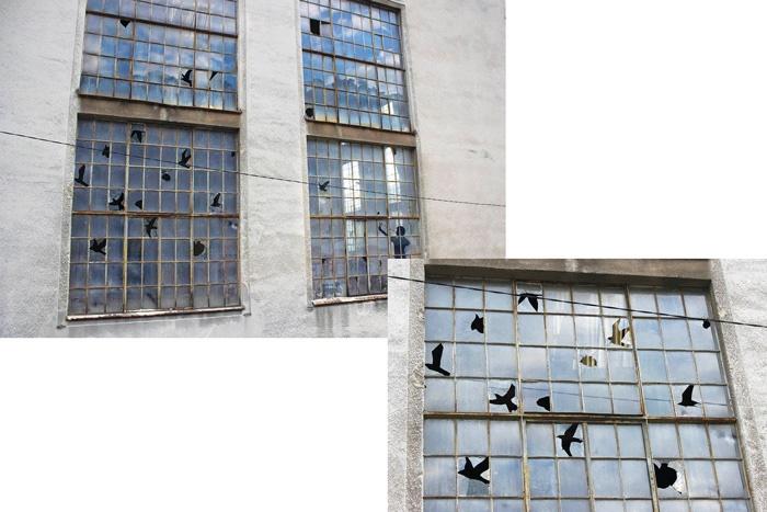 پرندههای آسمانی و شیشههای شکسته