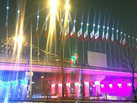 همزمان با چهلمین جشن شکوهمند انقلاب اسلامی معابرمنطقه ۱۹ آذین بندی شد