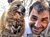 نقش سلفی فدرر با شادترین حیوان دنیا در رونق صنعت گردشگری استرالیا