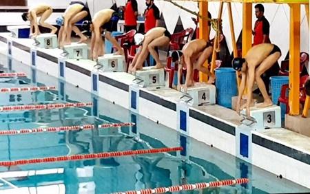 معرفی برترین های مسابقات شنای مسافت بلند جام فجر پارسیان