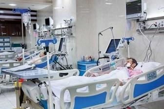 ۱۵ درصد بیماران کشور برای درمان به تهران ارجاع داده می شوند