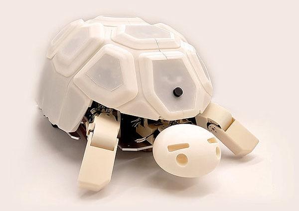 استفاده از ربات لاک پشت برای کمک به مهارت آموزی کودکان