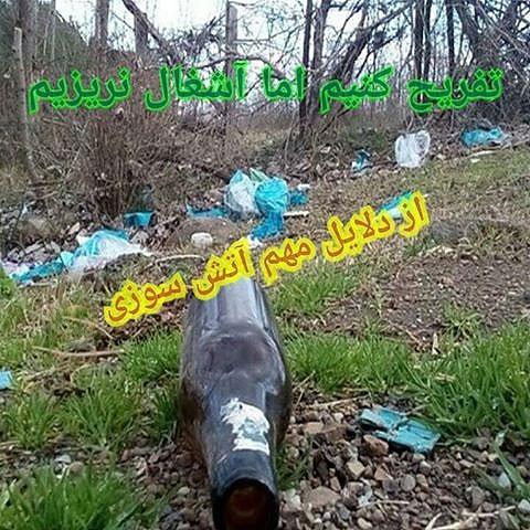 بطری در جنگل
