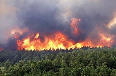 ۴ هکتار جنگلهای بهشهر توسط گردشگران در یک روز  سوخت