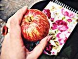 «جاذبه» و چند شعر دیگر