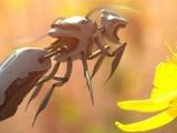 گردهافشانی با زنبورهای روباتیک