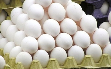 آنفلوآنزای حاد پرندگان مهار شد   ادامه روند کاهش قیمت تخم مرغ