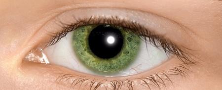 تشخیص اوتیسم با کمک مردمک چشم ها