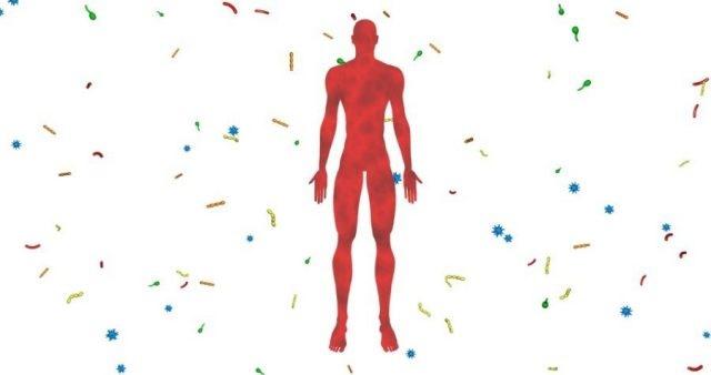 نیمی از بدن انسان را میکروبها تشکیل دادهاند