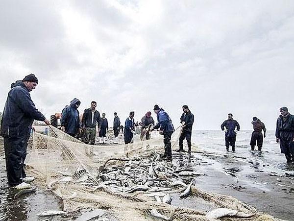 پایان فصل ماهیگری در سواحل خزر