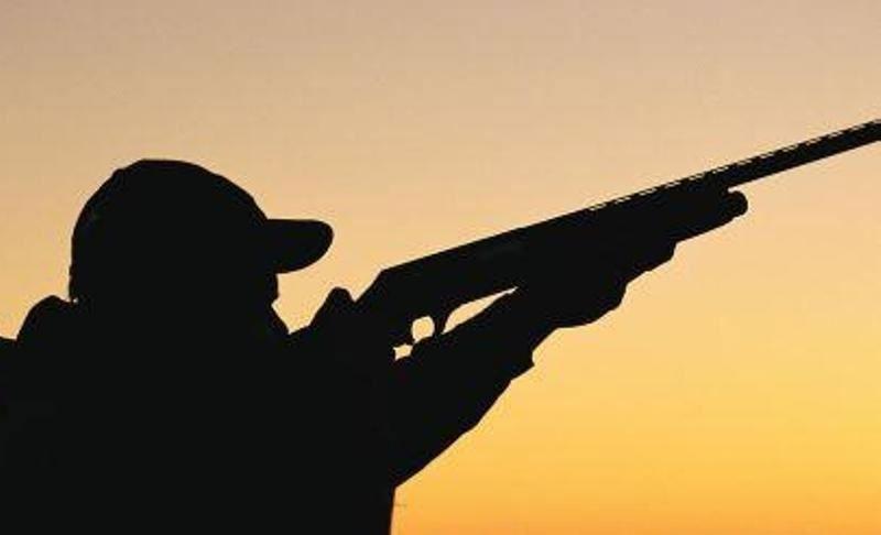 شکارچی شوکا به ۳۰۰ ساعت کار رایگان محکوم شد