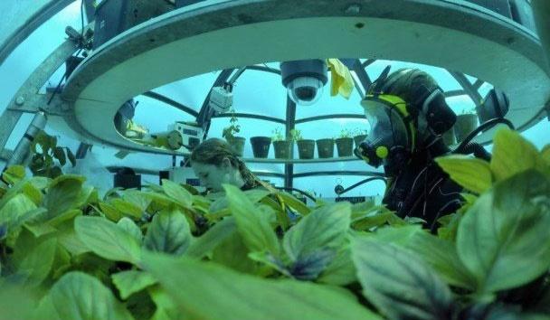 مزرعه ایتالیایی در عمق ۸ متری آبهای ایتالیا