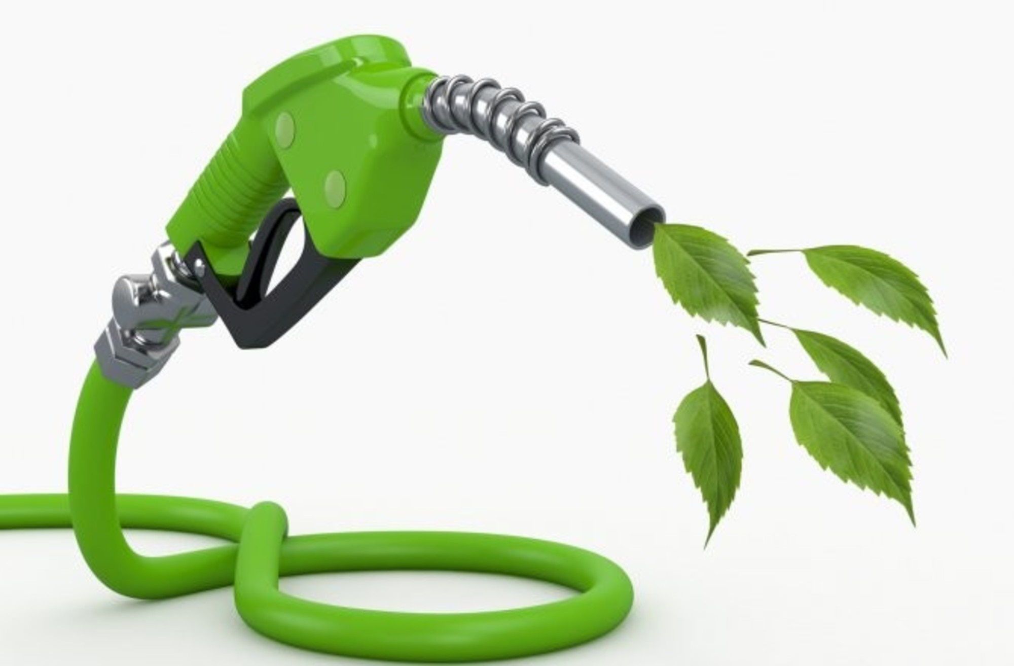 تولید سوخت زیستی جدید با استفاده از کاه و باکتری