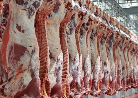 گوشت قرمز گران شد