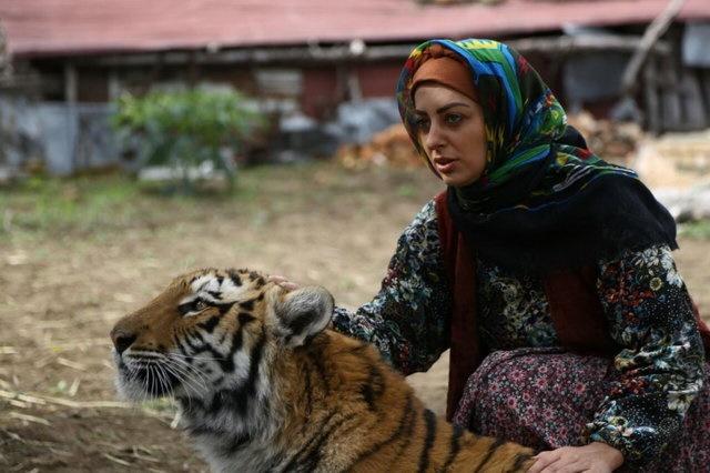 فیلمهای شبکه سه بعد از تعطیلات نوروز