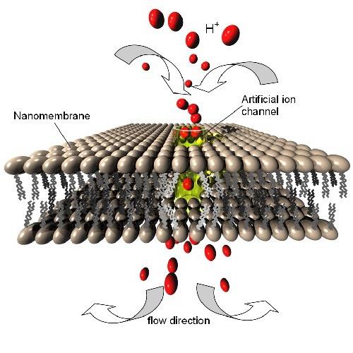 نانوبیوسنسور