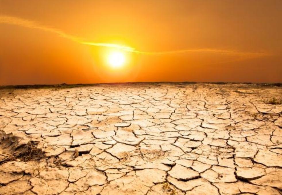 افزایش خطر کمبود مواد غذایی با گرمایش زمین