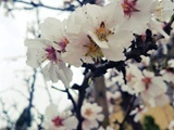 «نامهنگاری در خانهتکانی» و چند یادداشت دیگر