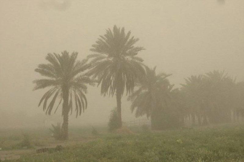 ۳۳ درصد گرد و غبار داخلی مربوط به کرمان است