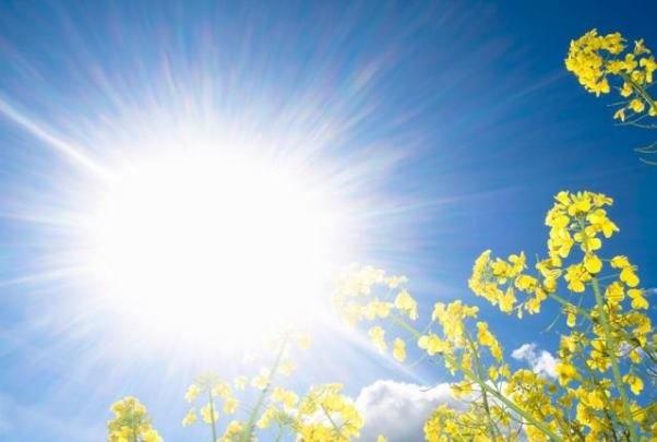 اشعه ماوراءبنفش خورشید تهدیدی برای سلامت چشمها